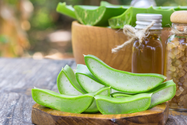 Aloe Vera benefits, side effects and risks